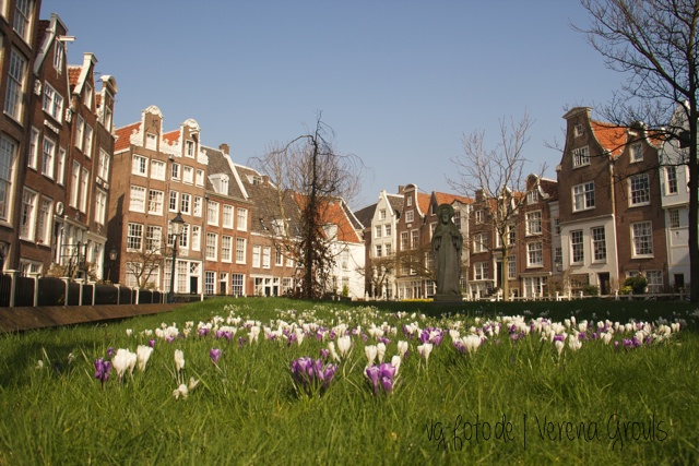 AmsterdamGeo (9)