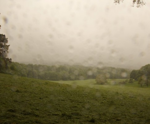 im Nieselregen durch den Aachener Wald